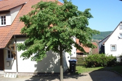 vg_broschuere_friedelshausen_20