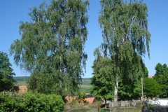 vg_broschuere_friedelshausen_12